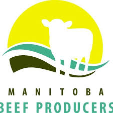 Manitoba Beef Producers